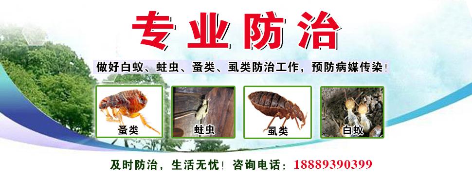 白蚁-蛀虫-蚤类-虱类防治
