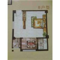 1室1厅1卫  1平米
