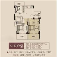 2室1厅2卫  75.71平米