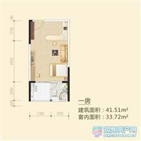1室1厅1卫  41.51平米