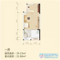 1室1厅1卫  39.23平米