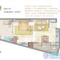 1室1厅1卫 66.7平米