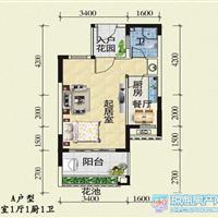 1室1厅1卫  43平米