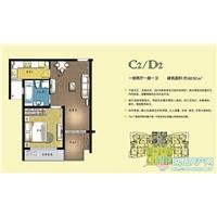1室2厅1卫  60.92平米