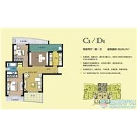 2室2厅1卫  100.27平米