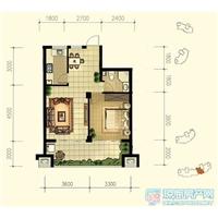 1室1厅1卫  68平米