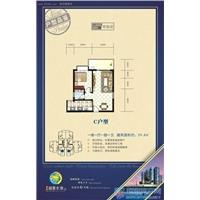 1室1厅1卫 59.4平米