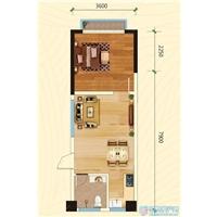 1室1厅1卫  46平米